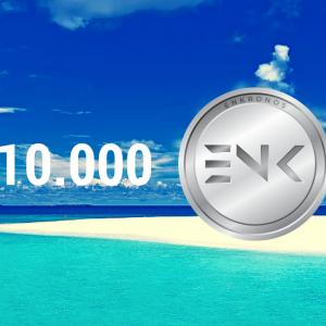 20.000 ENK (2).png